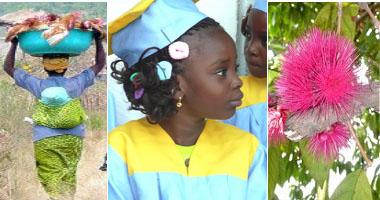 Soyez les bienvenus chez «Pro Kongo ya lobi», pour le Congo de demain